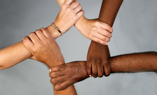diversity-2-510x310.jpg